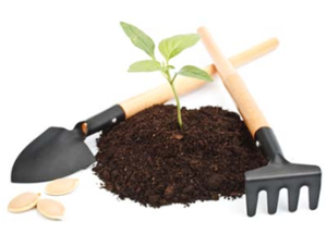 Купить растительный грунт