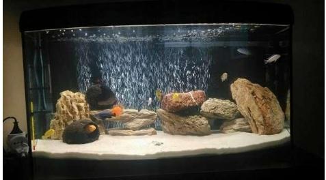 Отсев для аквариума