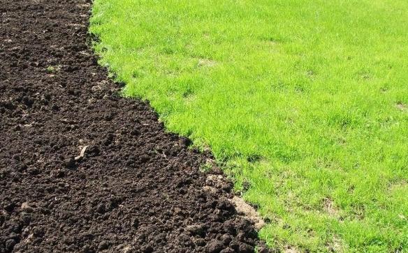 Что нужно знать про плодородный грунт